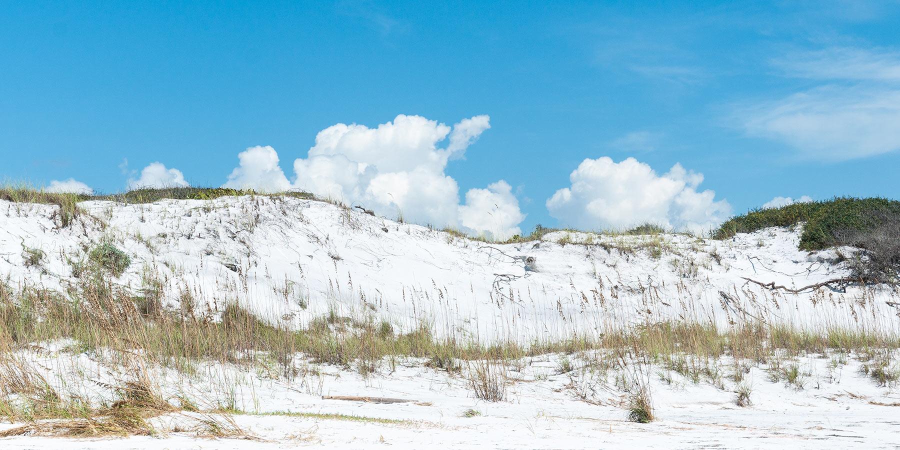 Inlet Beach 30A