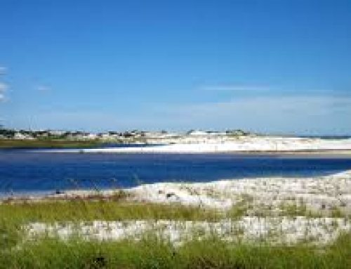 Grayton Beach State Park, a niche of its own…